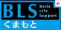BLSくまもと*九州でAHA-PEARS/BLS/PEARSS(ペアーズ・シミュレーション)ファーストエイド講習をナース・保育士向けに開催
